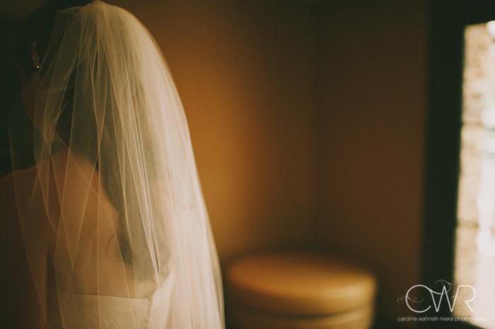 Lake House Inn Perkasie PA Wedding: glimpse of bride's veil