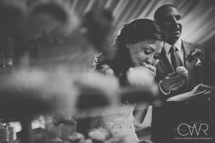Lake House Inn Perkasie PA Wedding: bride and groom with cupcake tower