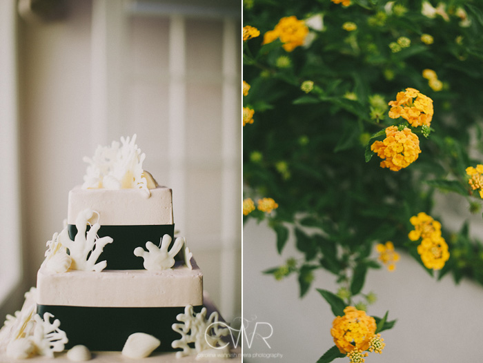 Wedding at Crystal Point Yacht Club: shell themed cake