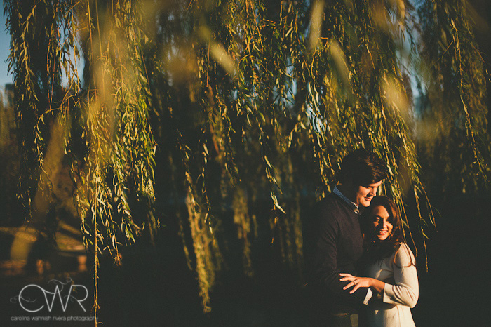 creative engagement photos under Willow tree in Boston park
