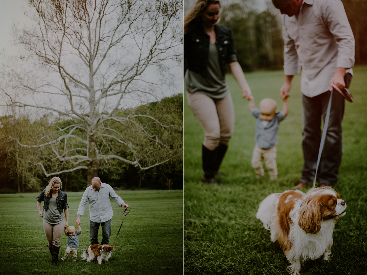 first birthday photos of family walking with son in park