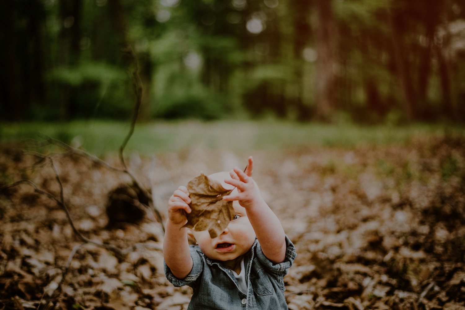 curious moment of toddler playing with leaf