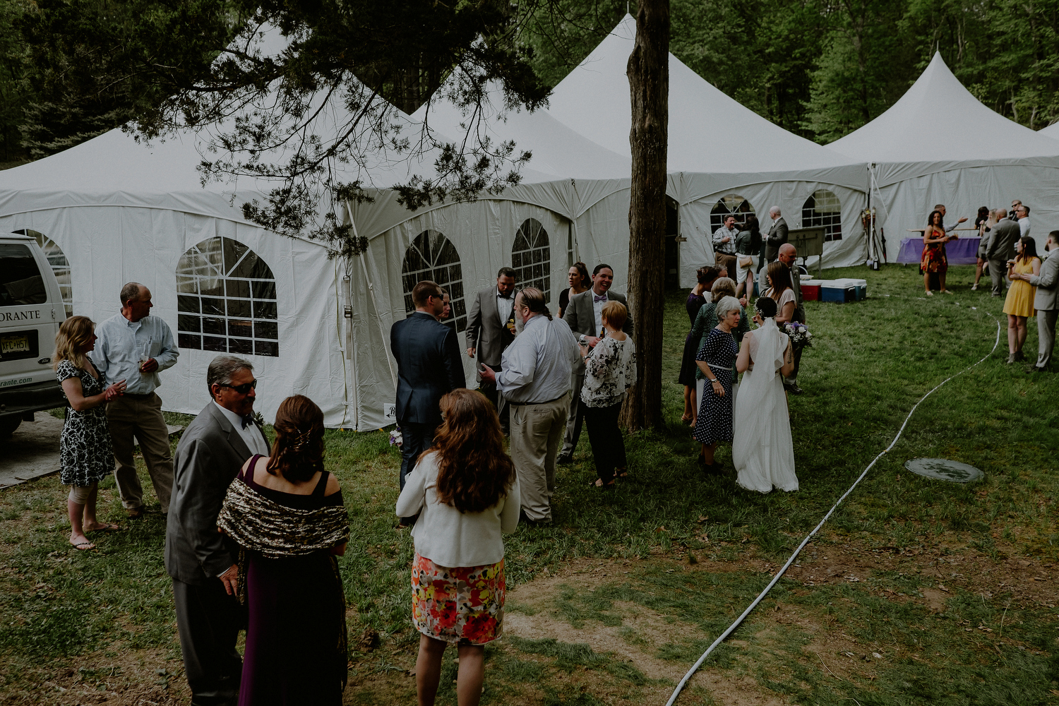 tented nj backyard wedding in trenton