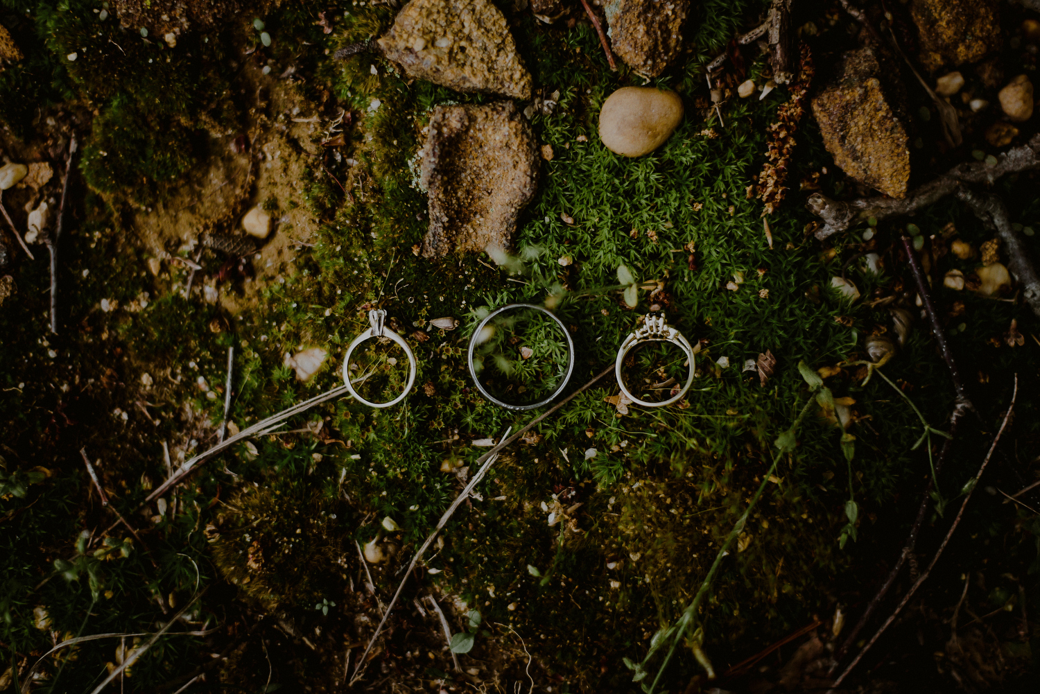wedding detail of rings on moss
