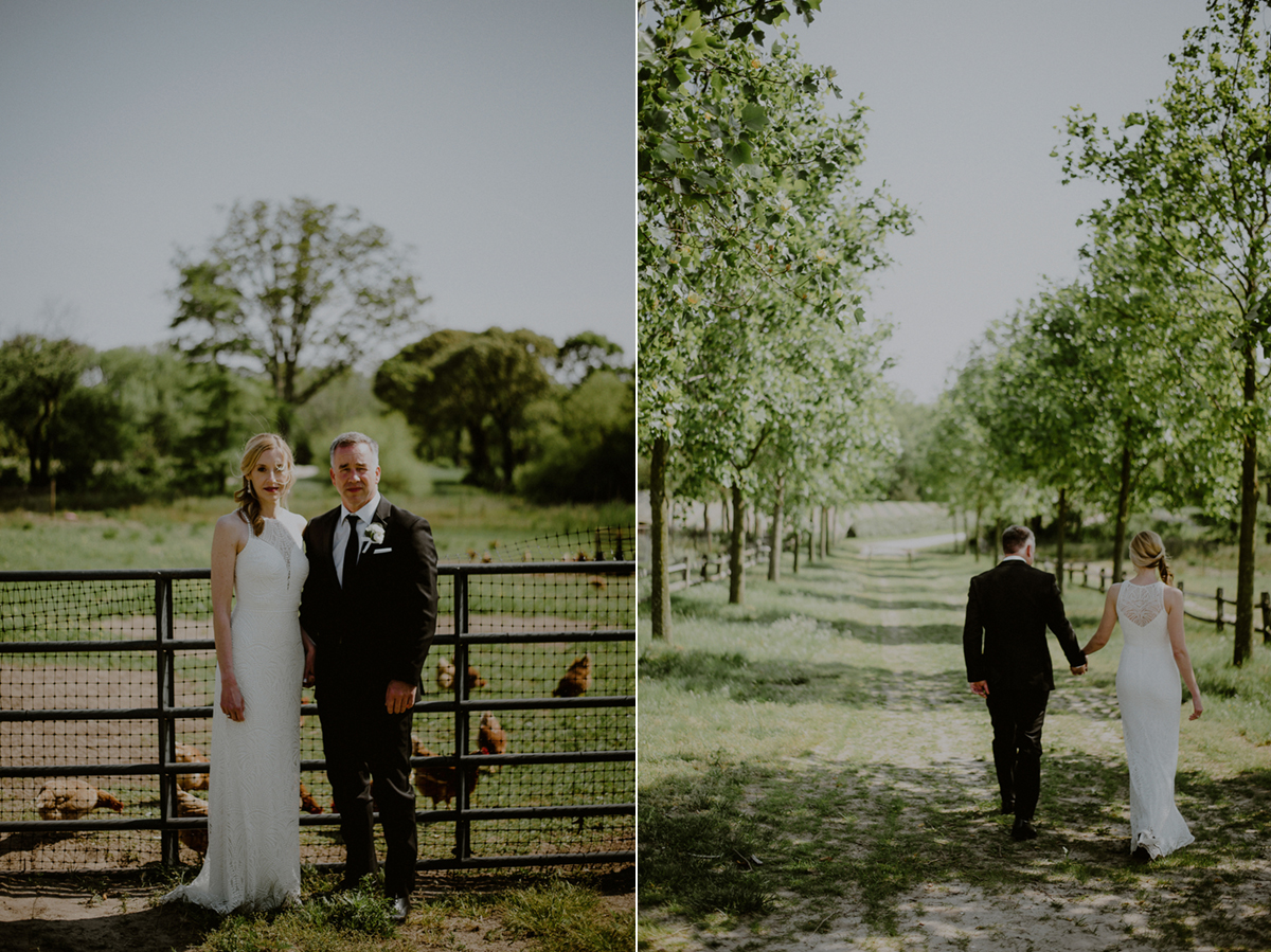 wedding portraits with farm animals